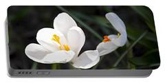 Crocus Flower Basking In Sunlight Portable Battery Charger