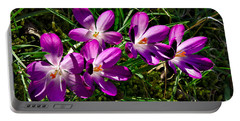Crocus In The Grass Portable Battery Charger