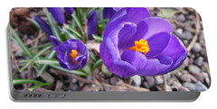 Crocus Sativus Portable Battery Charger