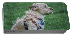 Portable Battery Charger featuring the photograph Cruz Enjoying A Warm Gentle Breeze by Thomas Woolworth