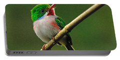 Cuban Tody Portable Battery Charger by Tony Beck