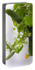 Cucumber Dance Portable Battery Charger