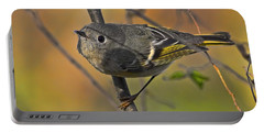 Portable Battery Charger featuring the photograph Curiosity by Gary Holmes