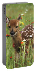 Portable Battery Charger featuring the photograph Curious Fawn by Chris Scroggins