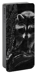 Curious Raccoon Portable Battery Charger