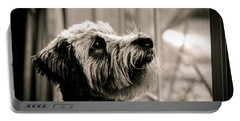 Curious Schnoodle Portable Battery Charger