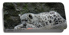 Curious Snow Leopard Cub Portable Battery Charger
