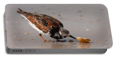Curious Turnstone Portable Battery Charger
