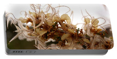 Curlleaf Mountain Mahogany Portable Battery Charger