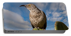Curve-billed Thrasher On A Prickly Pear Cactus Portable Battery Charger