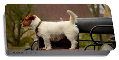 Cute Dog On Carriage Seat Bruges Belgium Portable Battery Charger