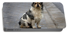 Cute Dog Sits On Pavement And Stares At Camera Portable Battery Charger