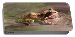 Cute Litte Creek Frog Portable Battery Charger