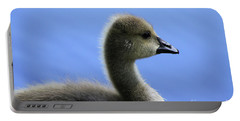 Portable Battery Charger featuring the photograph Cygnet by Alyce Taylor