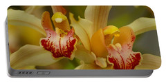 Cymbidium Twins Portable Battery Charger
