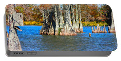 Cypress Birdhouse  Portable Battery Charger