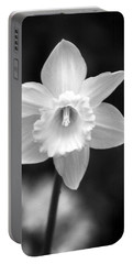 Daffodils - Infrared 10 Portable Battery Charger by Pamela Critchlow