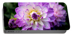 Dahlia Flower With Purple Tips Portable Battery Charger