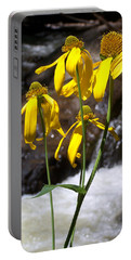 Daisies Near The Water  Portable Battery Charger