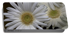 Daisy Photo Portable Battery Charger