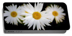 Daisy Trio Portable Battery Charger