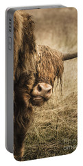 Highland Cow Damn Fleas Portable Battery Charger