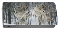 Portable Battery Charger featuring the photograph Dances With Wolves by Wolves Only