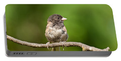 Dark Eyed Junco Portable Battery Charger