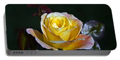 Portable Battery Charger featuring the photograph Day Breaker Rose by Kate Brown