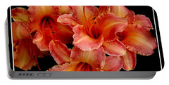 Portable Battery Charger featuring the photograph Daylilies 1 by Rose Santuci-Sofranko