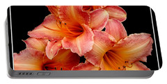 Portable Battery Charger featuring the photograph Daylilies 2 by Rose Santuci-Sofranko