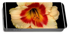 Portable Battery Charger featuring the photograph Daylily 3 by Rose Santuci-Sofranko