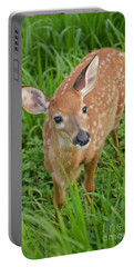 Deer 42 Portable Battery Charger