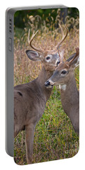 Deer 48 Portable Battery Charger