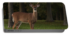 Portable Battery Charger featuring the photograph Deer In Headlight Look by Tammy Espino