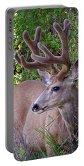 Buck In The Woods Portable Battery Charger by Athena Mckinzie