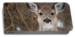 Deer Portable Battery Charger by Jeannette Hunt