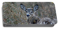 Portable Battery Charger featuring the photograph Deer by Karen Silvestri