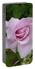 Portable Battery Charger featuring the photograph Delicate Purple Rose by Lingfai Leung