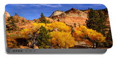 Portable Battery Charger featuring the photograph Desert Autumn by Greg Norrell