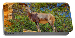 Portable Battery Charger featuring the photograph Desert Bighorn Sheep by Greg Norrell