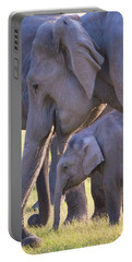 Dhikala Elephants Portable Battery Charger
