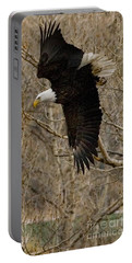 Portable Battery Charger featuring the photograph Diving Eagle by J L Woody Wooden