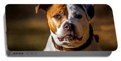 Dixie Doodle The Pit Bull Portable Battery Charger by Eleanor Abramson