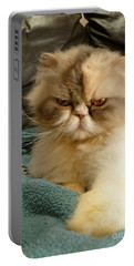 Do I Look Amused? Portable Battery Charger by Vicki Spindler