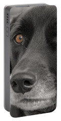 Dog Peek A Boo Portable Battery Charger