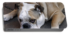 Dog. Tired. Portable Battery Charger