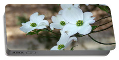 Portable Battery Charger featuring the photograph Dogwood 2 by Andrea Anderegg