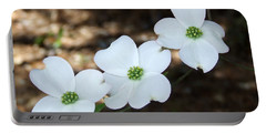 Portable Battery Charger featuring the photograph Dogwood by Andrea Anderegg