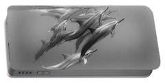 Dolphin Pod Portable Battery Charger